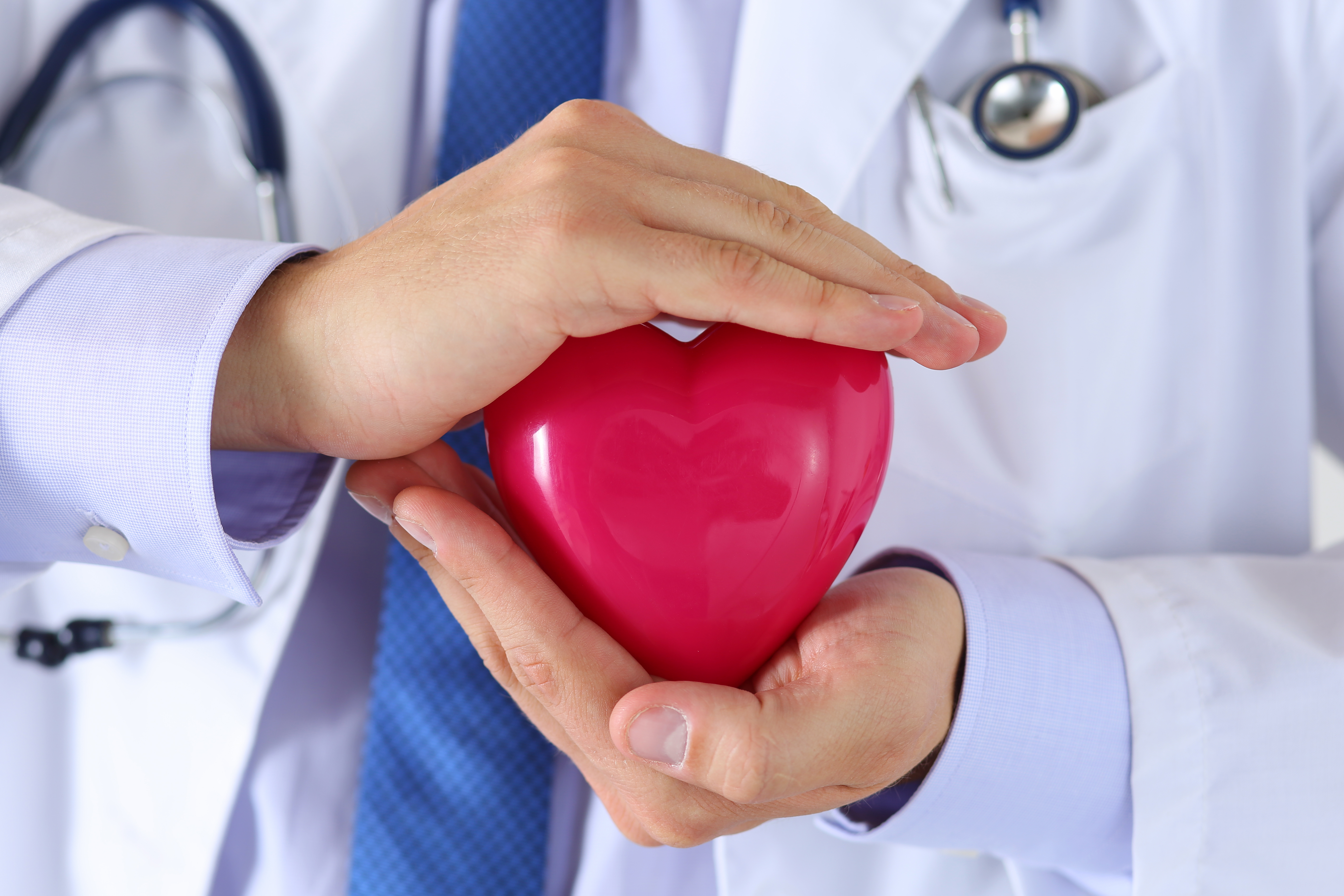 Male medicine doctor hands holding and covering red toy heart closeup. Medical help, cardiology care, health, prophylaxis, prevention, insurance, surgery and resuscitation concept