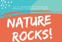 Nature Rocks Image 6 22 19 At 9.26 Pm