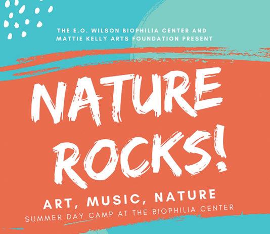 Nature Rocks Image 6 22 19 At 9.26 Pm