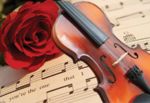 Heart Strings Violin