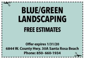 Blue Green Coupon Sowal Jan 2020