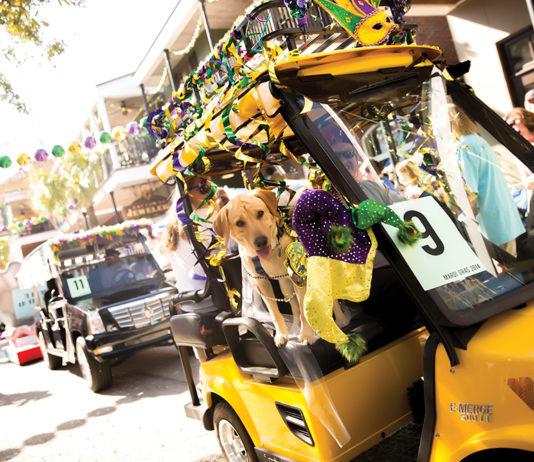 Mardi Gras Dogparade106 Copy