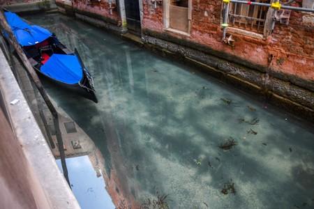 Venice Canal Clear 01