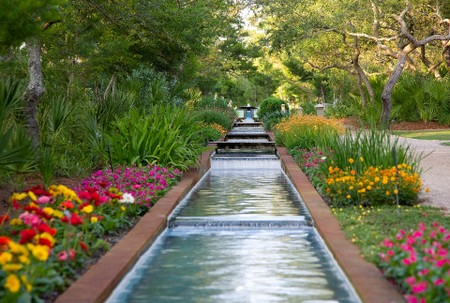 Cerulean Park Stream With Flowers