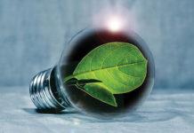 Energy Savings Light Bulb W Leaf