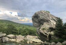 Lotus Life Rock