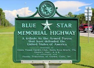 Picture Blue Star Memorial Highway Marker