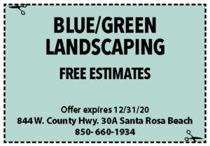 Sowal Dec 2020 Coupons Blue Green