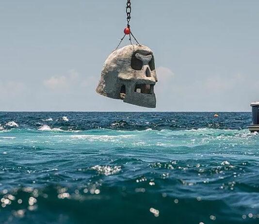 Underwater Museum Skull