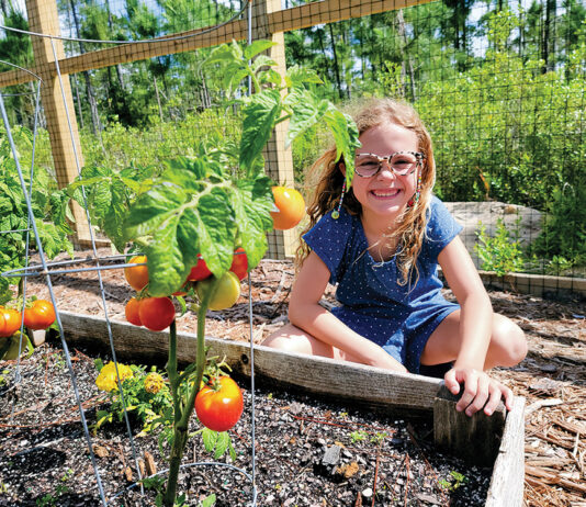 Cultivate Community Gardens
